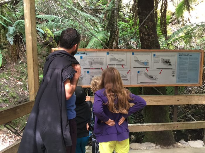 Learning about Mole Creek Caves