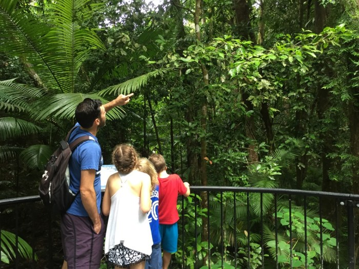 Daintree with kids