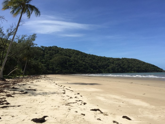 We love the Daintree!
