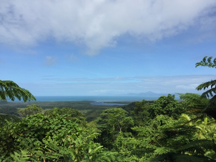Things to do in Cape Tribulation