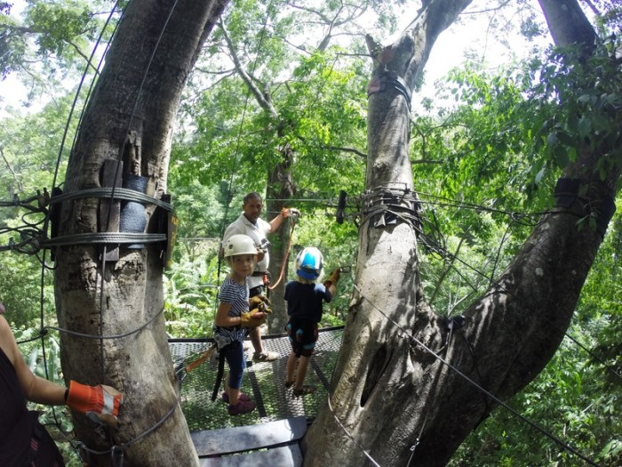 Miravalle Canopy Tour