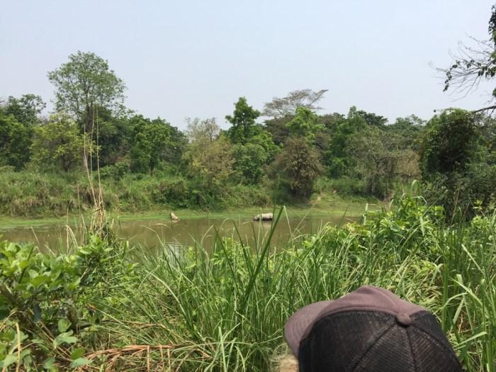 Chitwan Safari with kids