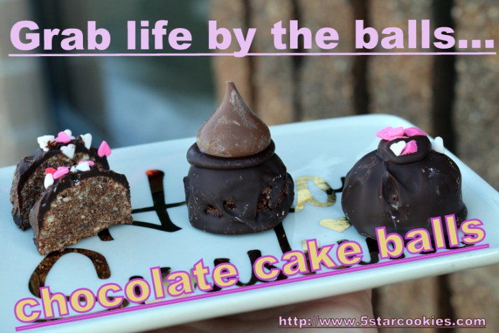 Chocolate Cake Balls from 5starcookies