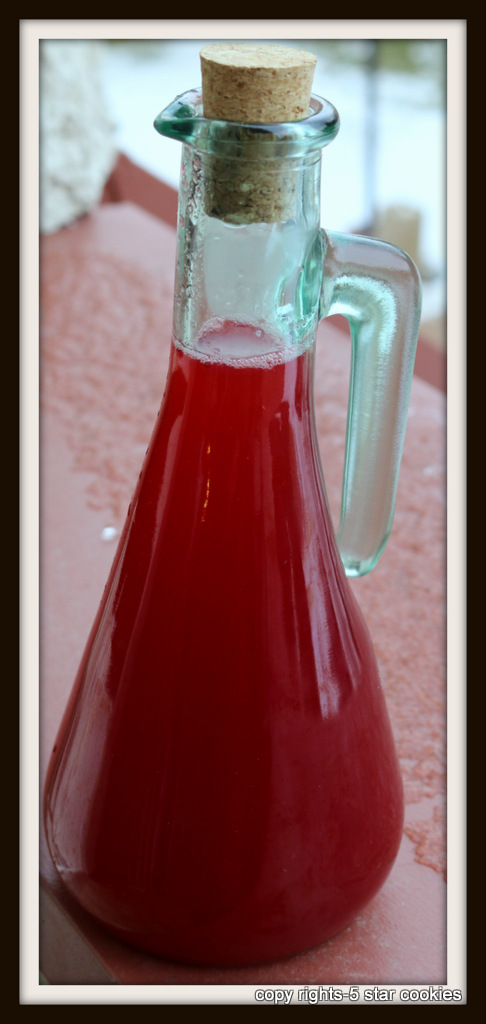 Cranberry Juice from 5starcookies-Store in jars or bottles