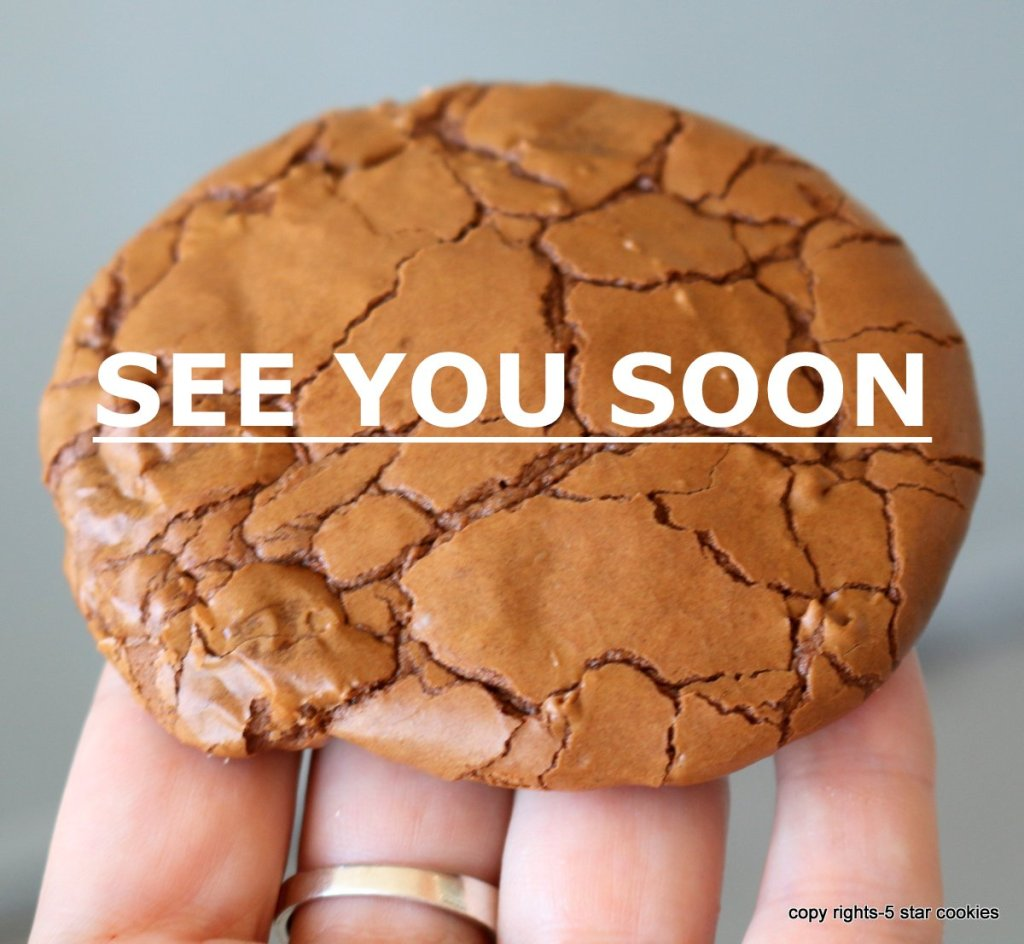 see you soon the best chocolate cookie