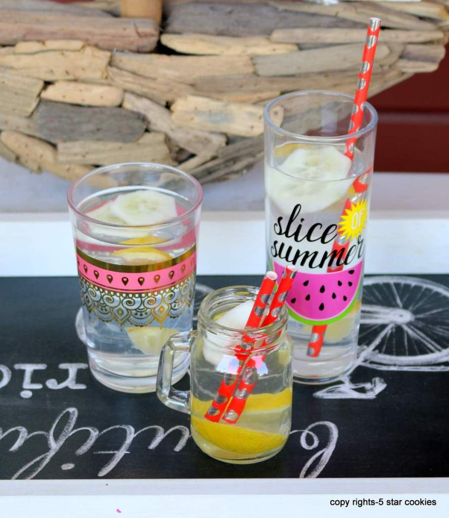 Healthy Homemade Alkaline Water