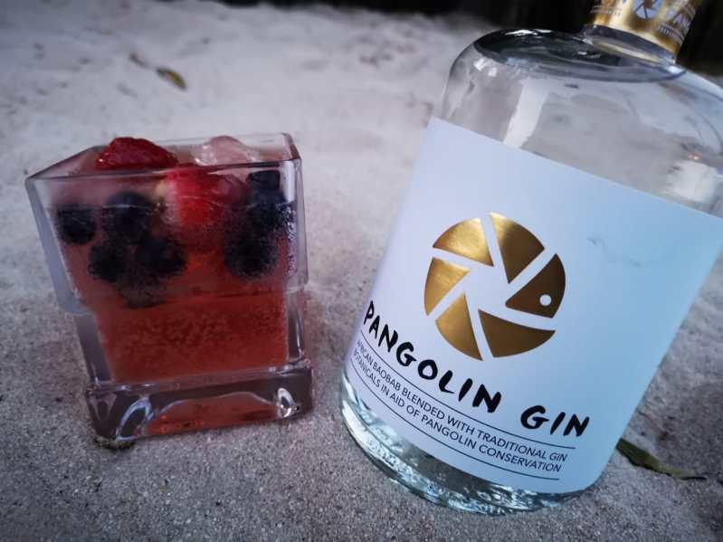 pangolin-gin