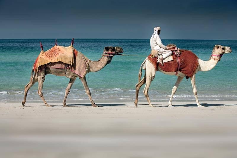 Ritz Carlton Dubai Private Beach