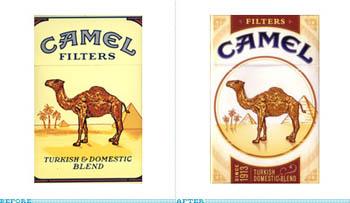 camel paket