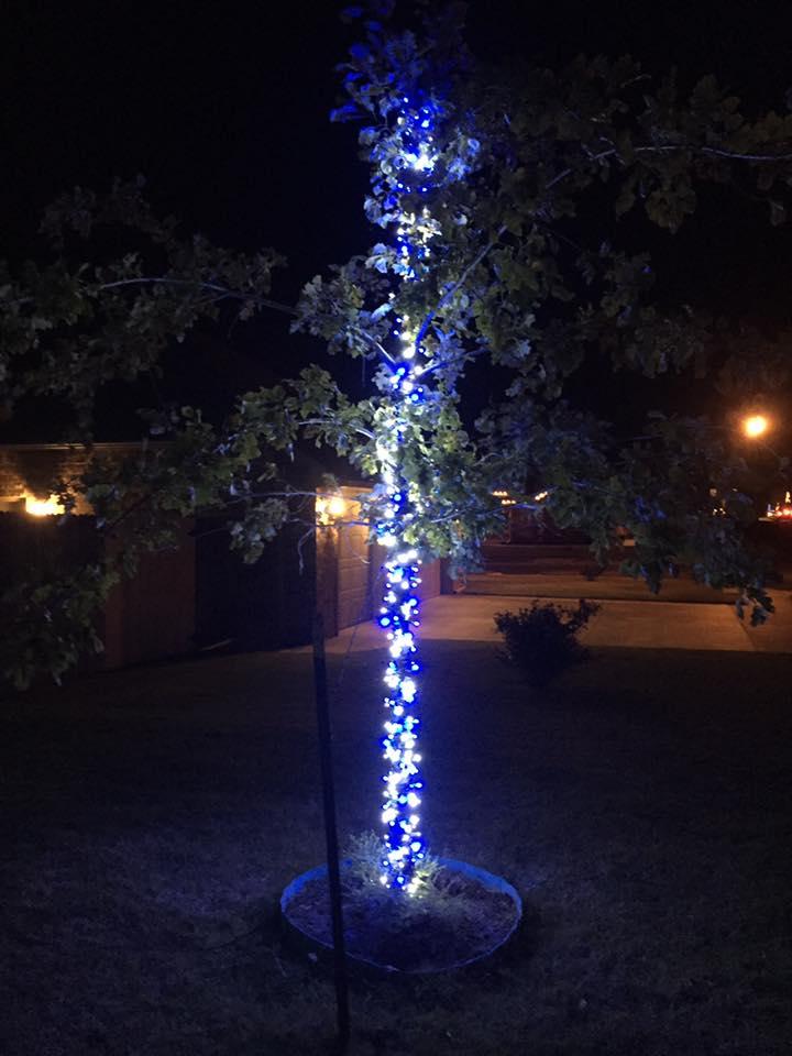 Christmas Lights 15170870 1464502763560189 9130545449430546031 n