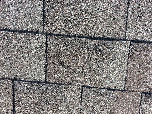 Hail Damage storm damage How to Detect  a Storm Damaged Roof Shingle Hail Damage