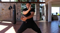 A full and free online guide to 6 Dragons Kung Fu