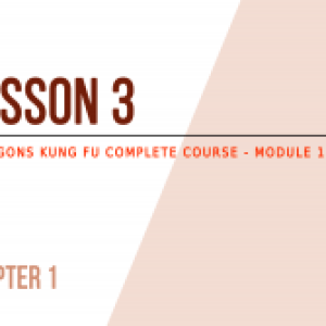 Lesson 3 – My first training session