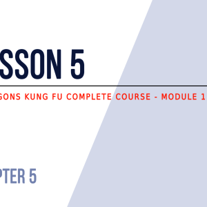 Lesson 5 – How to defend yourself