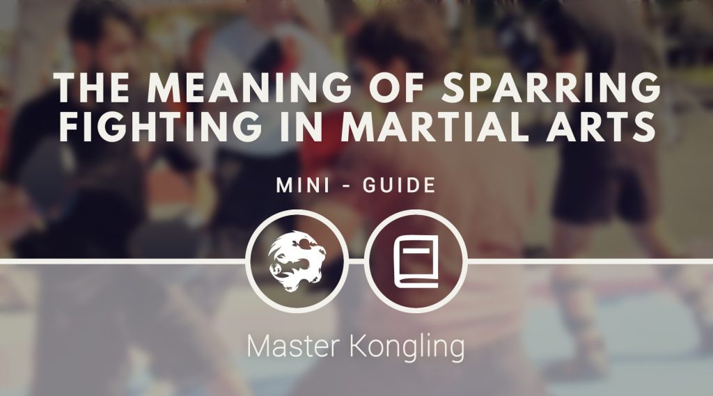 The Meaning Of Sparring Fighting In Martial Arts 6dragonskungfu Com
