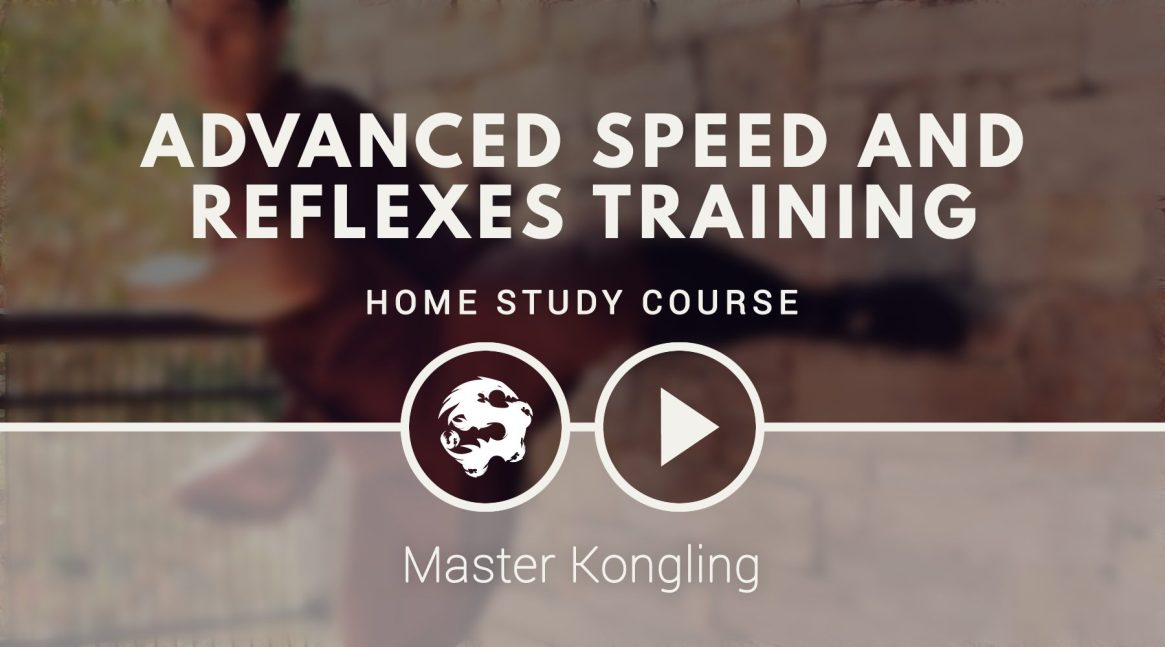 advanced_speed_and_reflexes_training