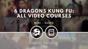6 Dragons Kung Fu: All VIDEO COURSES