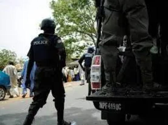 Watch Moment Nigeria Police Slaps Nengi