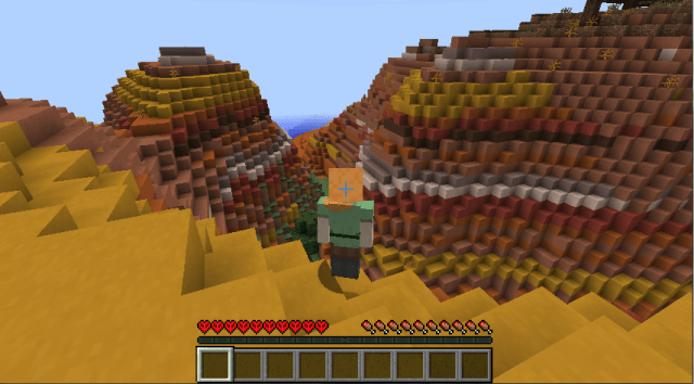 Minecraft_for_life