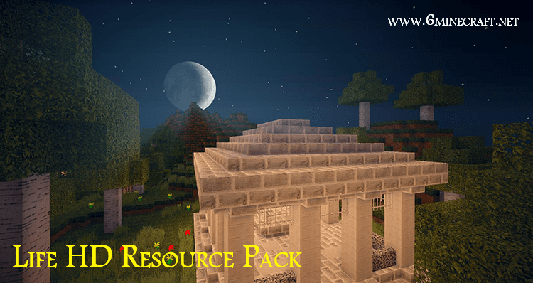 Life HD Resource Pack 1.16