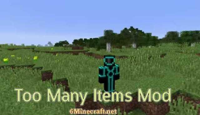 too many items mod 1.8.9