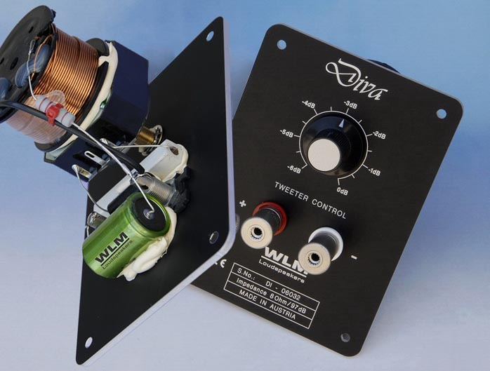 Analog Amplifier Circuits