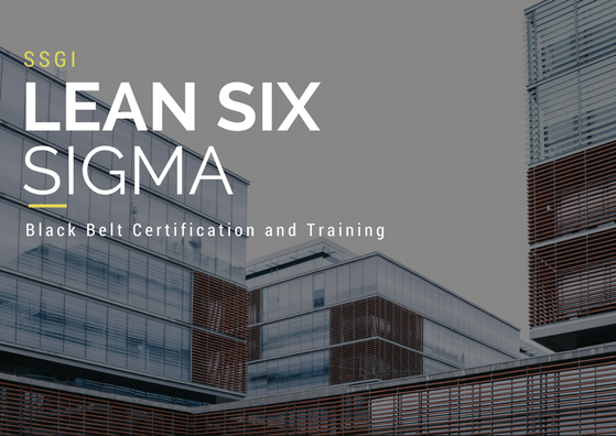 Lean Six Sigma Black Belt Certification