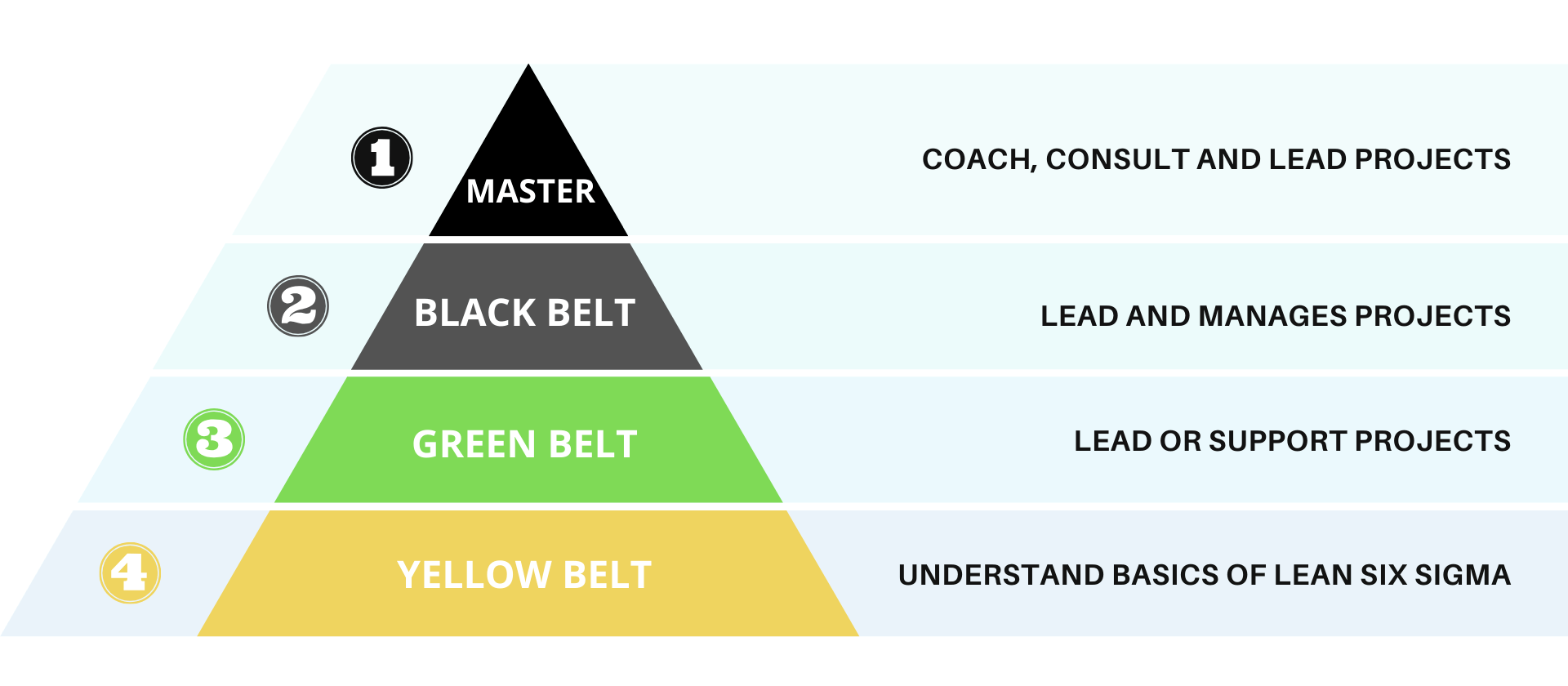 six sigma belt roles