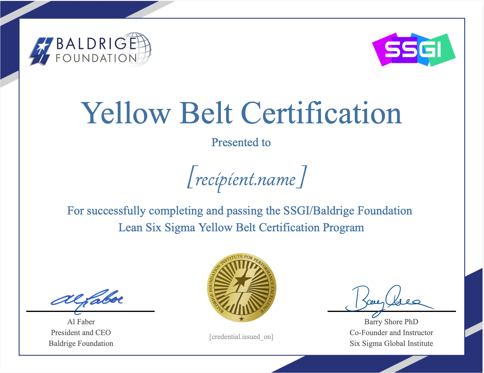 baldrige yellow belt ssgi