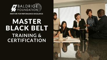 Master Black Belt Course Graphic