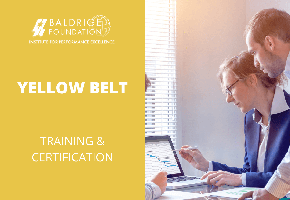 YELLOW BELT Baldrige
