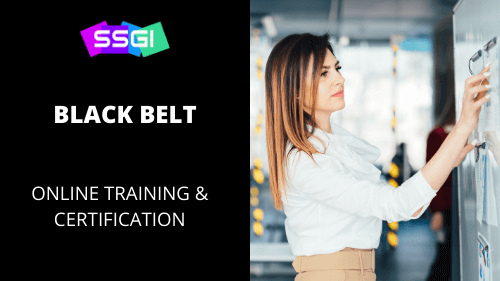 ssgi black belt six sigma course