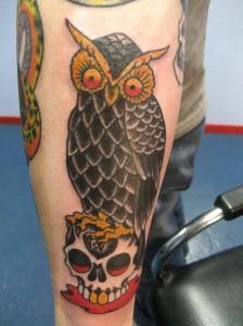 bob owl