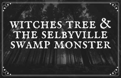 Witches Tree A