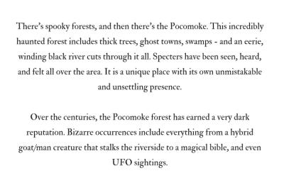 Pocomoke Forest B