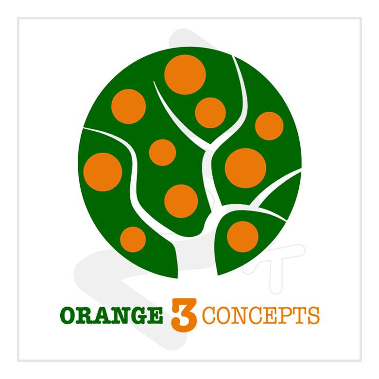 2015_orange3concepts