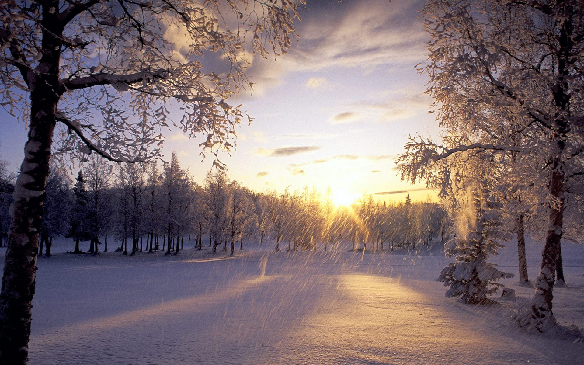 Snow Falling Wallpaper For Ipad A Heavy Snow Is Falling No Man Is Out Sunlight Can Soon