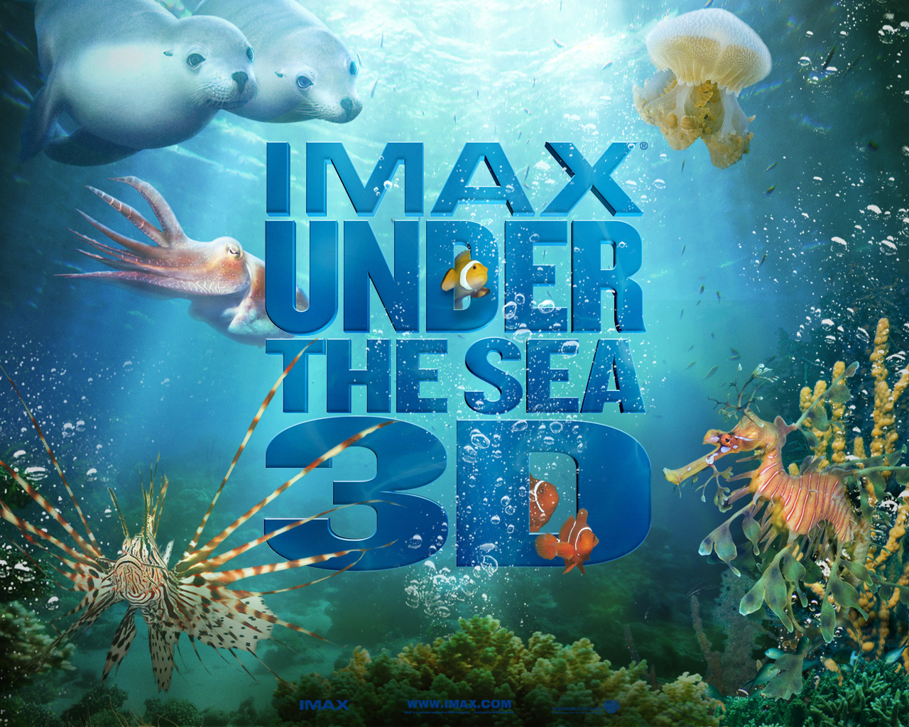 Ipad Wallpaper Hd Imax Under The Sea Post In 1280 215 1024 Pixel All Fishes