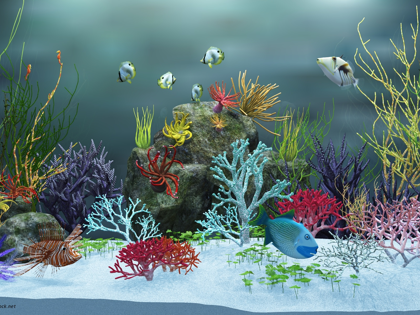 Beautiful Girl In Blue Water Wallpapers Underwater World Post Various Fishes Are Swimming