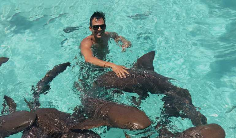 Swimming with sharks in the Bahamas