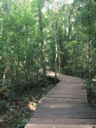 Iguazu Falls.