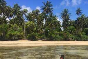 Boipeba Bahia South Coast beaches in Bahia