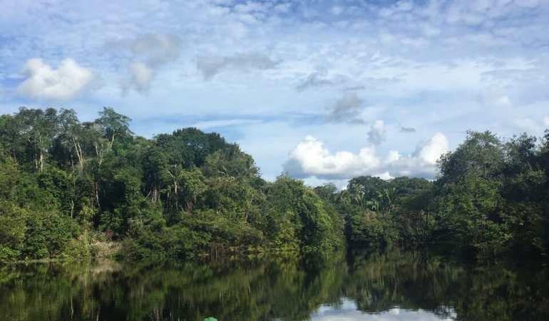 Aventuras na Floresta Amazônica, Brasil