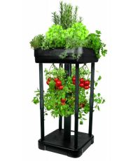 Upside Down Tomato Planter and Patio Garden System