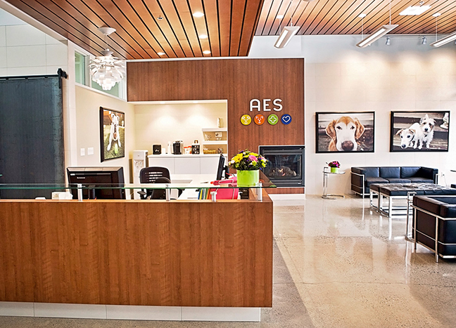 AES Lobby Identity Signage Design by Dara Chilton with 7 Lucky Dogs Creative