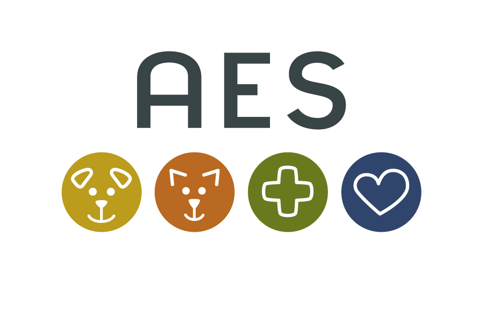 AES Identity Design by Dara Chilton with 7 Lucky Dogs Creative