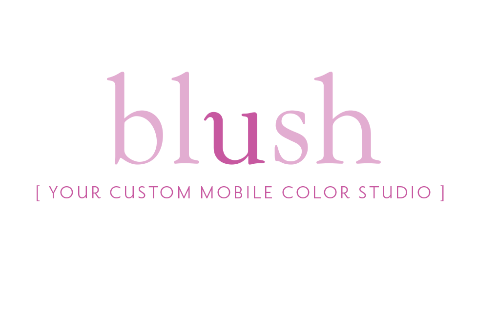 blush Identity Design by Dara Chilton with 7 Lucky Dogs Creative