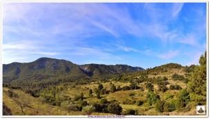 Panorama 5 (1)