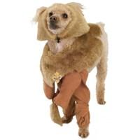 Cowardly Lion Dog Doggy Pet Costume