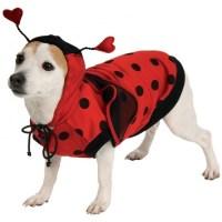 Ladybug Dog Doggy Lady Bug Pet Costume